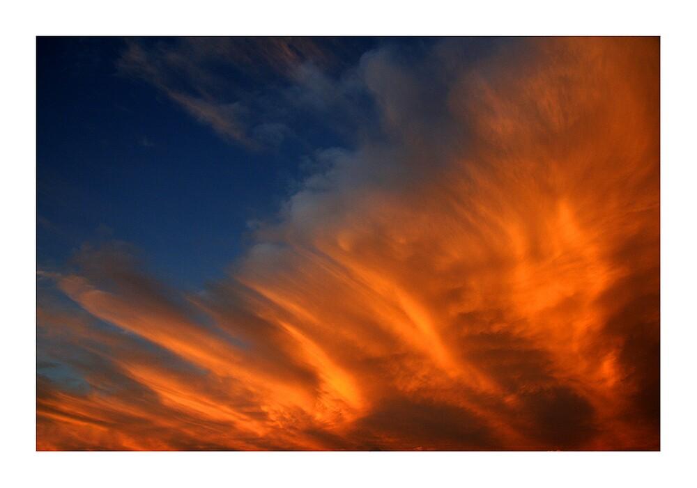 Electric Orange by Bryant Evans