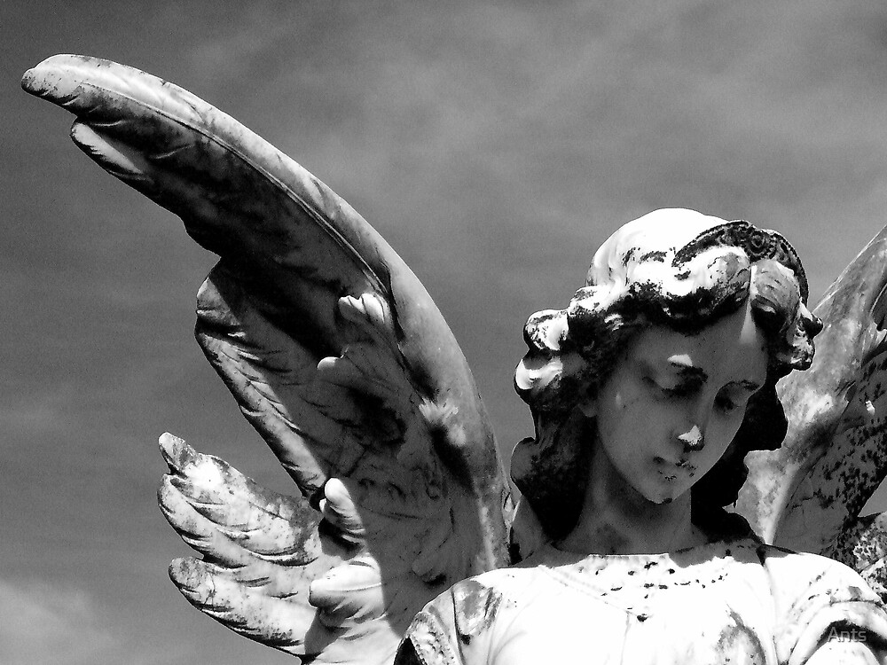 angel 3 by Ants