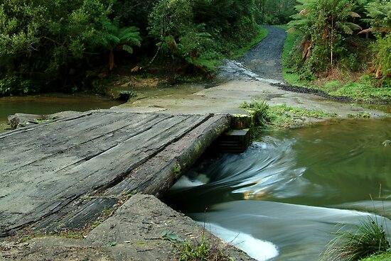 Aire Crossing Otway Ranges by Joe Mortelliti