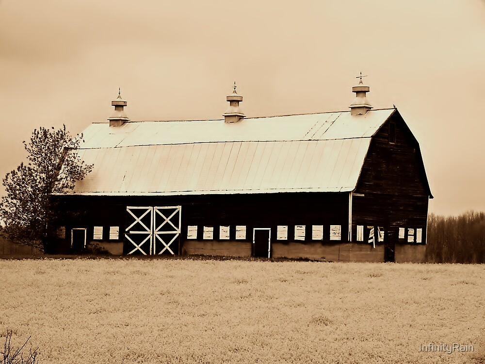 Country Livin' in Sepia by InfinityRain