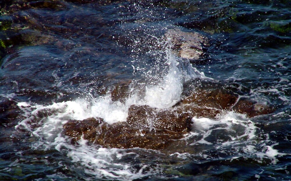 Splash by Lynn