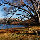 Lakeside in the Cantebury Hills by chriso