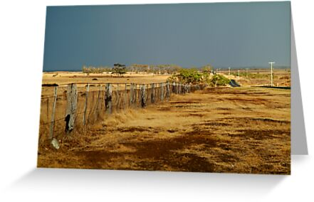 Country Road,Rural Geelong by Joe Mortelliti