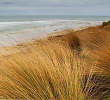 Bancora Surf Beach,Bellarine Peninsula by Joe Mortelliti