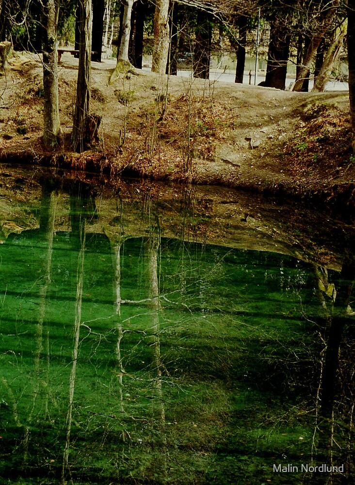 Green lake by Malin Nordlund