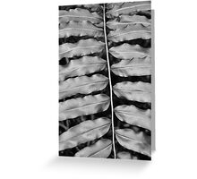 Symmetry in Black and White  Greeting Card