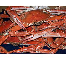 COOKED CRABS Photographic Print