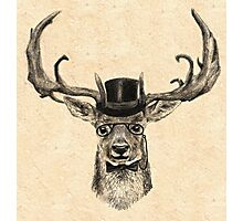 Mr Deer Photographic Print