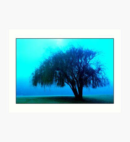 Willow tree blue Art Print