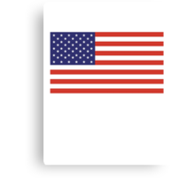 American Flag, Stars & Stripes, Pure & Simple, America, USA Canvas Print