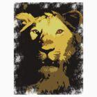 Lions!! by arosha