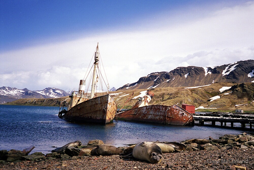 Old Ships, Grytviken, South Georgia by Clare McClelland