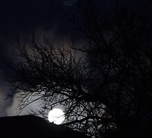 Blue moon over Queanbeyan.... by Cliff Manley