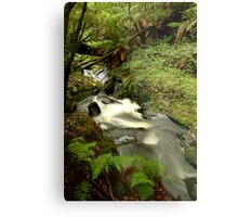 Rushing Waters,Triplet Falls,Otway's Metal Print