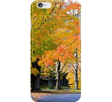 Autumn in the Neighborhood iPhone Case/Skin