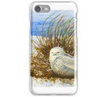 SNOWY iPhone Case/Skin