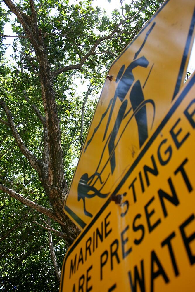 Danger Signs by Dan Weston