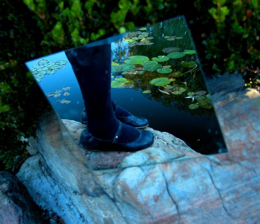 Secret Garden by Fiona  Braendler