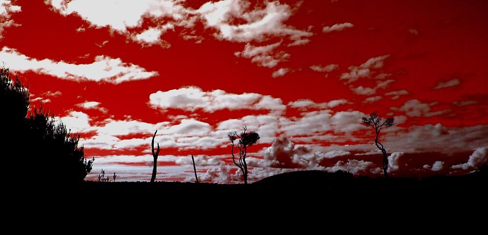 Red by DeeCeeDee