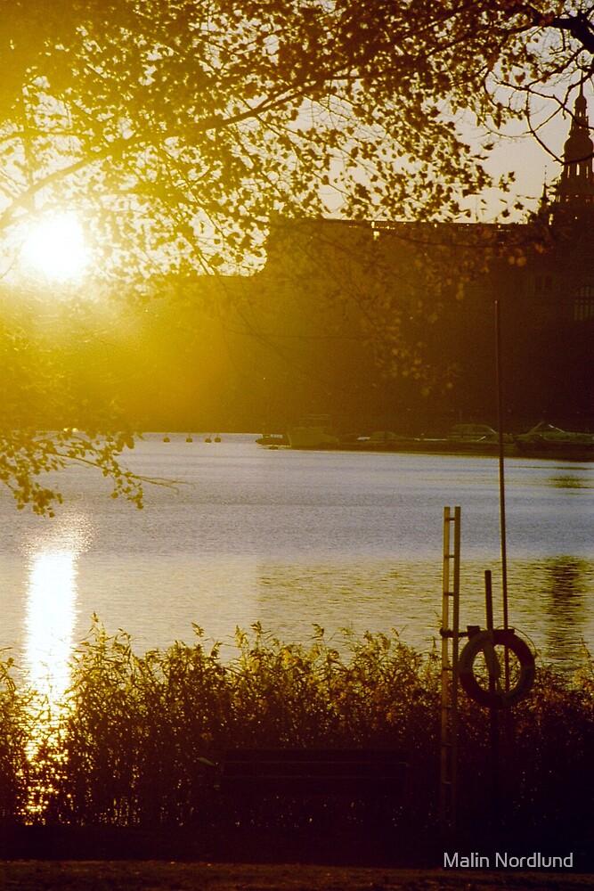 Swedish harmony  by Malin Nordlund
