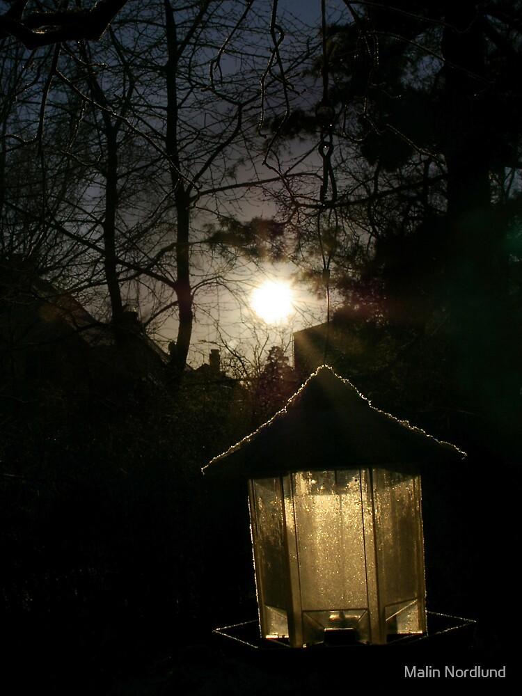 Winter Light by Malin Nordlund
