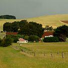 Maddens Hill by Joe Mortelliti