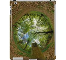 Butterfly Sculpture in Prehen Woods, Derry (Sky-in) iPad Case/Skin