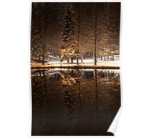 Winter evening by a pond in a park Poster