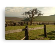 Barrabool Hills Cattle Yard Canvas Print