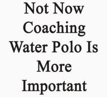 Not Now Coaching Water Polo Is More Important  by supernova23