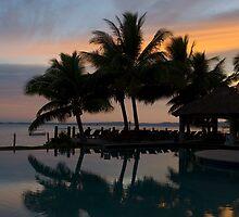 Fijian Pool by Craig Goldsmith