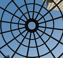Looking Up by Craig Goldsmith