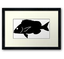 Pigfish Fish Silhouette (Black) Framed Print