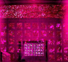 Lattice reflected by Robyn Lakeman