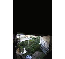underbridge Photographic Print