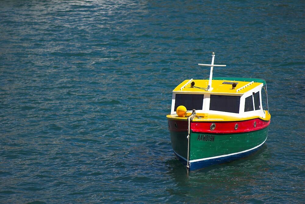 Little Toy Boat by Craig Goldsmith