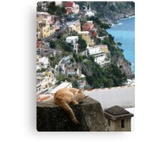Cat Nap Canvas Print