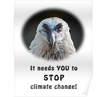 Bearded Vulture against climate change Poster