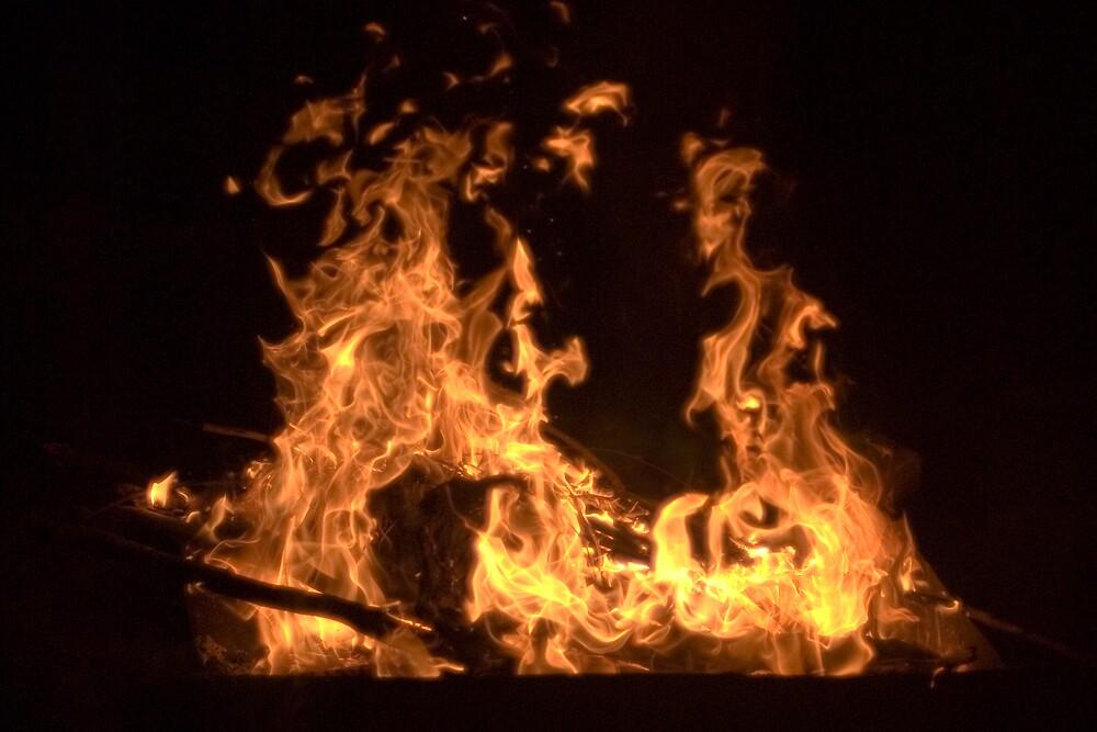 Fire by Craig Goldsmith