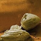 Sandstone rocks by a Pool by Donny Ocleirgh