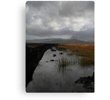 Old waterlogged Irish Bog  Canvas Print