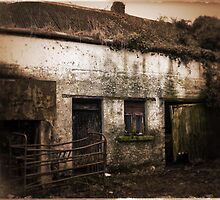 Old Rundown Irish Farm by Donny Ocleirgh