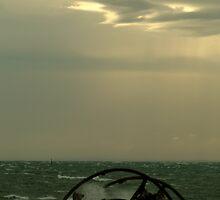 Ozone Shipwreck,Indented Heads by Joe Mortelliti