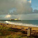 Queenscliff Beach by Joe Mortelliti