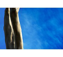 Eucalypt Trunks Photographic Print