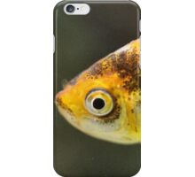 Do you have some fish flakes? iPhone Case/Skin