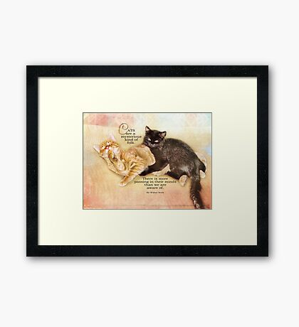 mysterious cats-inspirational Framed Print