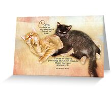 mysterious cats-inspirational Greeting Card