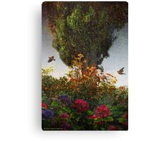 lombardy cypress in tuscany Canvas Print