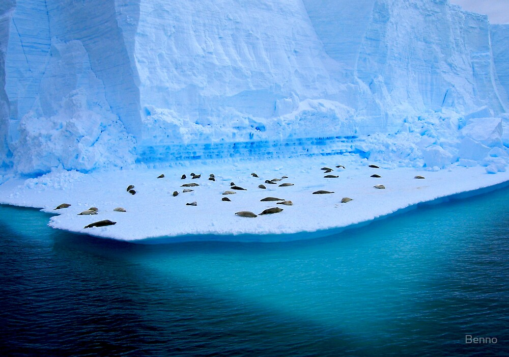 Living On Ice by Benno